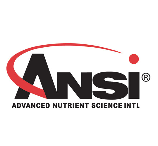ansi_logo